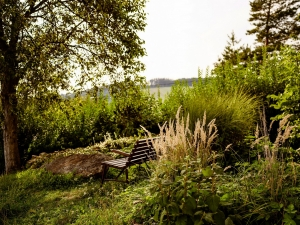 Hotel Vega- Část okrasné zahrady k odpočinku