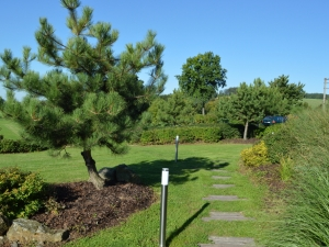 Hotel Vega - okrasné zahrady