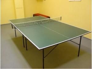 stolní tennis 01